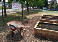 Sunset Community Gardening Workshop-May 26