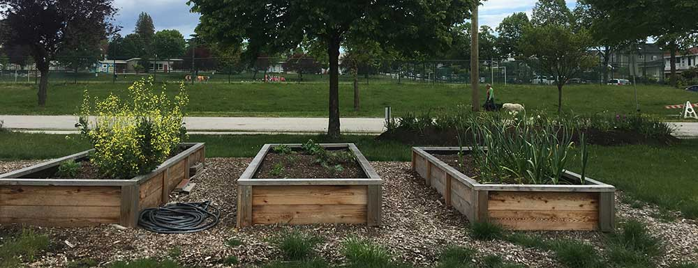 Shared Garden Beds Available