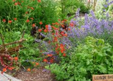 The Moberly Garden is looking for FRIENDS!